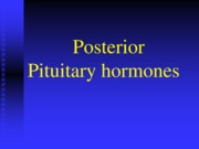 Endocrinology Lecture #5 (February 11th 2015)