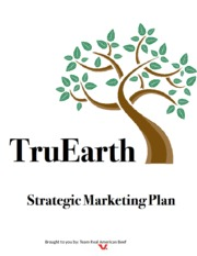 Copy of Marketing - TruEarth - Final Paper