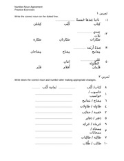 Number Noun Agreement- Exercise