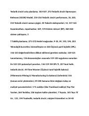 turkish_001812.docx