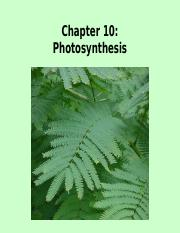 Chapter 10 - Photosynthesis SE