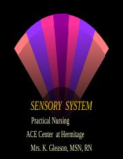 AP_Sensory_System_Power_Point.ppt