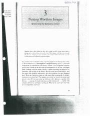 Putting Words to Images.pdf