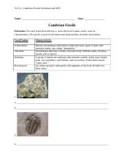 S-6-3-1_Cambrian Fossils Worksheet and KEY.docx