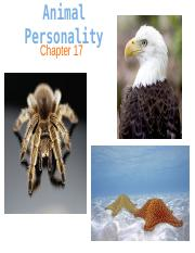 Animal Personality-1