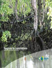 Mangroves for Coastal Defence_A Decisionmakers Guide_Web Version.pdf