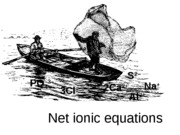 net-ionic-equations