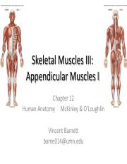 Appendicular Muscles_I_16