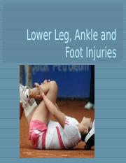 Lower Leg, Ankle and Foot Injuries--Students 2015