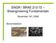 Class 09-72 - Bioremediation - Quiz Answers