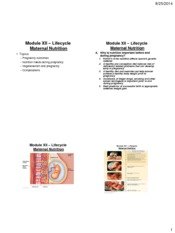 Module-12-Lifecyle-Maternal-Nutrition-four-slides-per-page