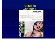 Attitudes and Persuasion07B (2).pdf