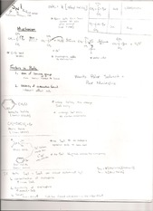 Ch 8 Notes - Page 2