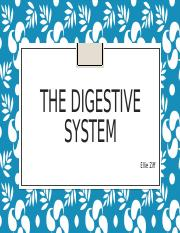 The Digestive System.pptx