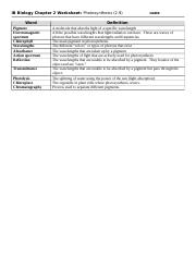 2.9 Photosynthesis Worksheet .docx