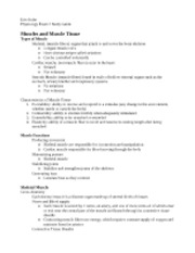 physio exam 2 study guide