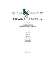 New Beer in the Market-Executive Summary
