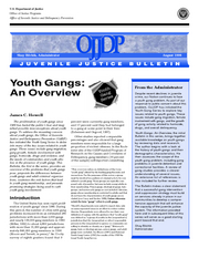 youth gangs an overview essay On oct 1, 2014, terrance j taylor (and others) published the chapter: youth gangs: an overview of key findings and directions for the future in the book: violent.
