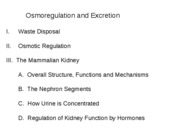 11 Osmoregulation