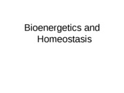 Lecture9-1.bionergetics_and_homeostasis