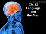 Student_Ch12_Language and the Brain_Fall 2013