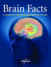 SfN Brain Facts