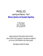 6- Learning and Memory Part 1