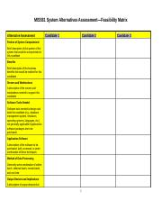 MIS581-System-Alternatives-Assessment-Feasibility-Matrix