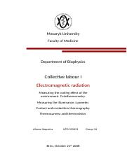 Report Collective labour I.docx