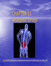 analgesic drugs -student 153 (1)