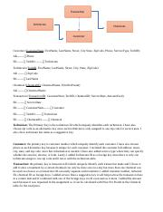 Database Design and Transformation II - Homework 5.docx