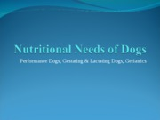 Nutritional Needs of Dogs-Part II