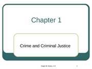 Criminal Justice Chapter 1 Slides
