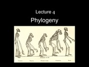 Lect_04-Phylogeny