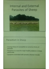 Internal and Exteral Parasites of Sheep