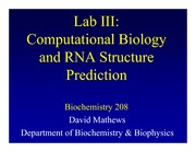 RNA Secondary Structure Lecture