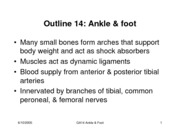 GA14_ankle&foot