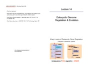 Lecture 14 Gene Expression
