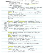 Plants and civ notes #3