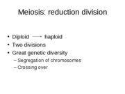 Lecture Slides- Meiosis Ch13