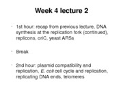 week_4_lecture_2