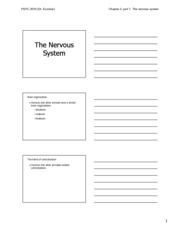 Ch. 3 The Nervous System Notes