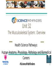 Unit 32_Musculo-Skeletal SystemOverview.pptx