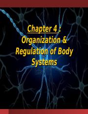 Lecture 10 - Types of Tissues, Regulation and Integumentary System.ppt
