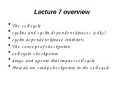 Lecture 7 to post