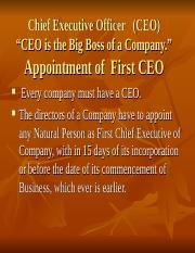 Chief Executive Officer.ppt