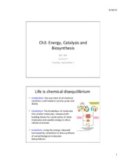 Lecture 4 - Sept 1 Energy, Catalysis and Biosynthesis