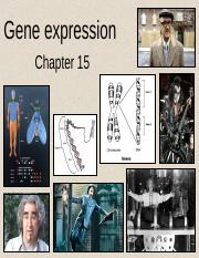 191 Ch 15 - Gene expression Redux (2).ppt