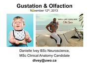 5. Gustation and Olfaction