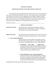 N201 Guidelines for the use of the Nursing Care Plan-2